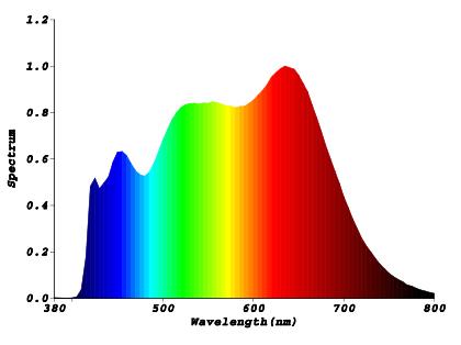 Spectre LED SEERA Lumière Saine