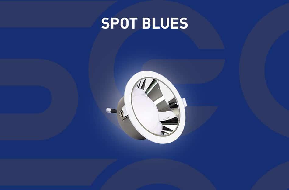 presentation-spot-blues